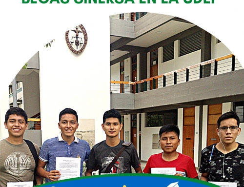 """SINERSA SCHOLARSHIPS: Farmer`s Children can register until October 27, 2021 """"Enable a link for students who wish to apply for the SINERSA Scholarships at UDEP"""""""